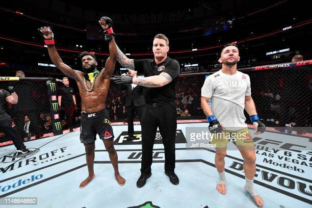 Aljamain Sterling celebrates his victory over Pedro Munhoz of Brazil in their bantamweight bout during the UFC 238 event at the United Center on June...