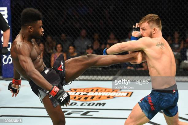Aljamain Sterling kicks Cody Stamann in their bantamweight fight during the UFC 228 event at American Airlines Center on September 8 2018 in Dallas...