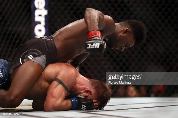 Aljamain Sterling top and Cody Stamann in their Bantamweight bout during UFC 228 at American Airlines Center on September 8 2018 in Dallas United...
