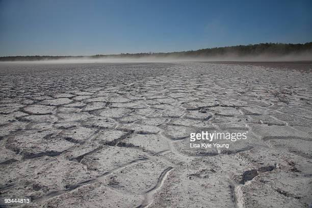Alkali parched soil