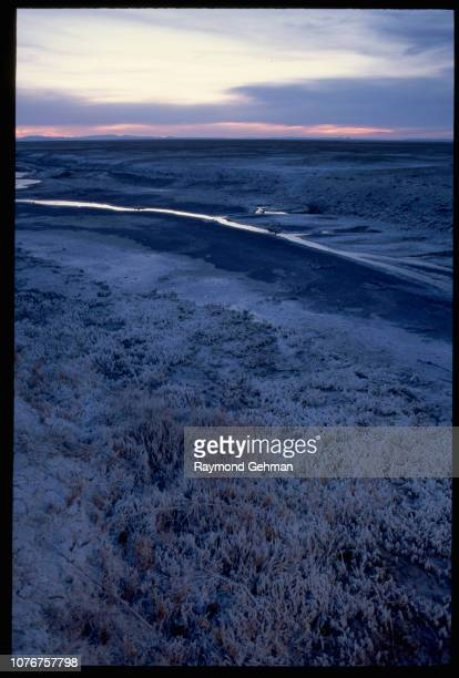 Alkaline Flats Near Marsh
