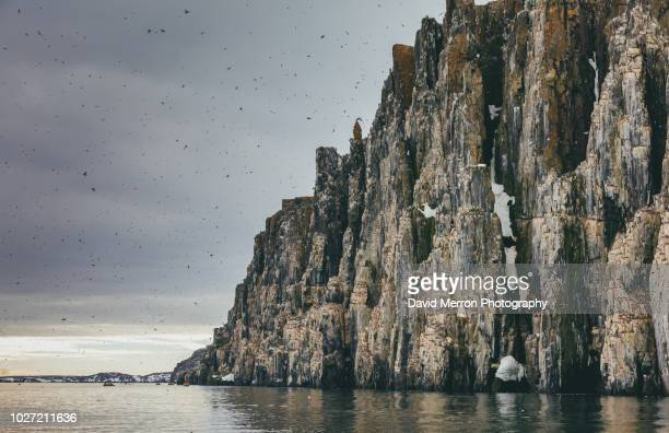 alkefjellet svalbard - david cliff stock pictures, royalty-free photos & images