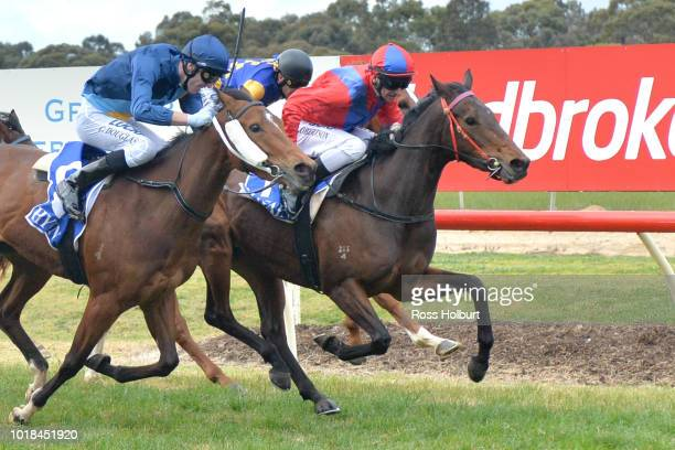 All About Alice ridden by Craig Robertson wins the Rushton Park FM Maiden Plate at Tatura Racecourse on August 18 2018 in Tatura Australia