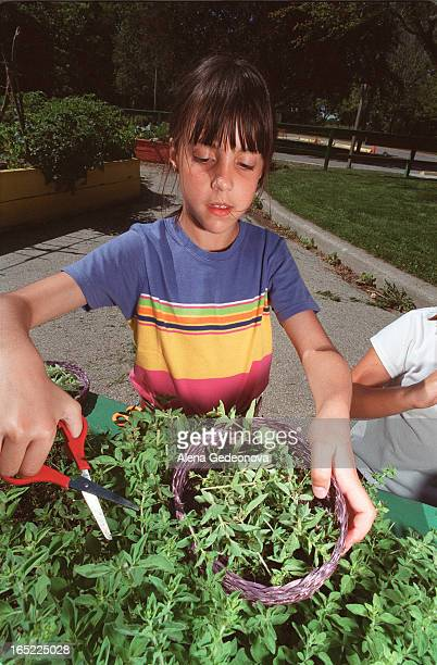 All children are welcomed to drop in Thursday mornings at the Children's Garden in High Park to learn about plants composting nutrition and other...