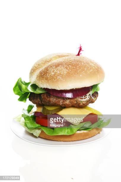 All Dressed Hamburger