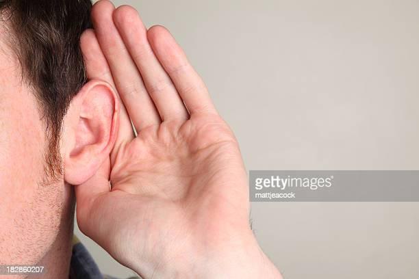 Tout oreilles