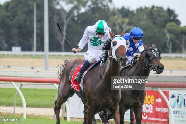 All Hard Wood ridden by Jamie Mott wins the KHQ Lawyers Maiden Plate at Sale Racecourse on January 21 2018 in Sale Australia