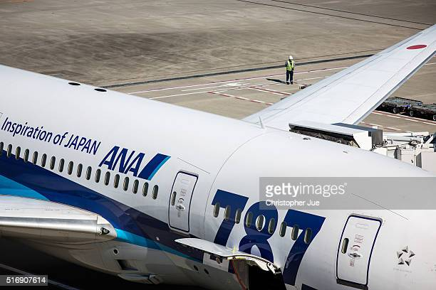 All Nippon Airways aircraft is seen on the tarmac at Haneda Airport on March 22 2016 in Tokyo Japan A failure with the checkin system of All Nippon...