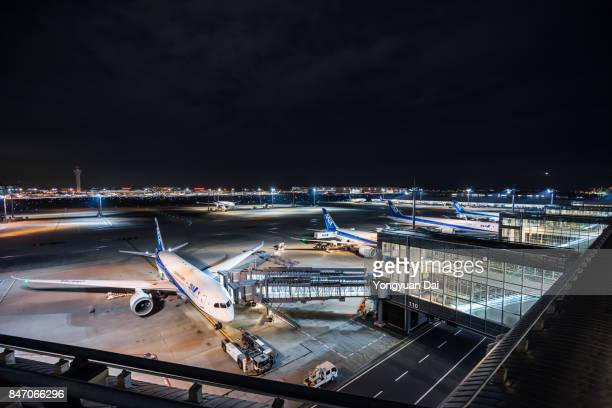 All Nippon Airways Airplanes at Haneda Airport