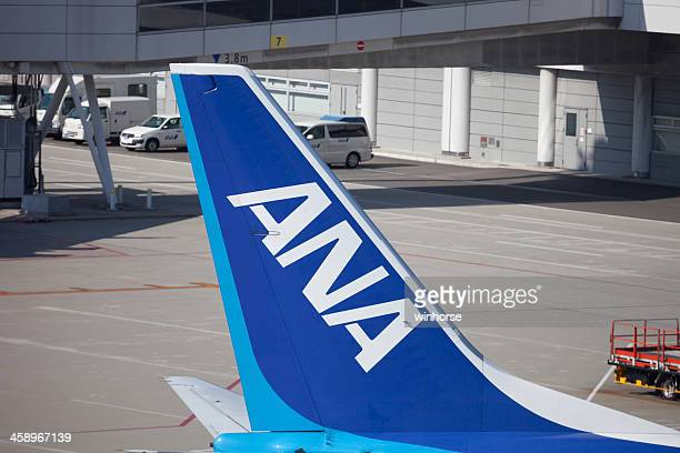 All Nippon Airways passenger plane in Japan