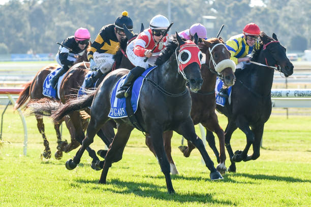 AUS: Bendigo Jockey Club Race Meeting