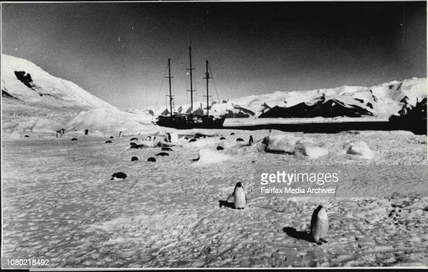 Allan and VI Thistlethwayte The boat has just arrived back from its Antarctic ExpeditionAt Cape Adare June 18 1988
