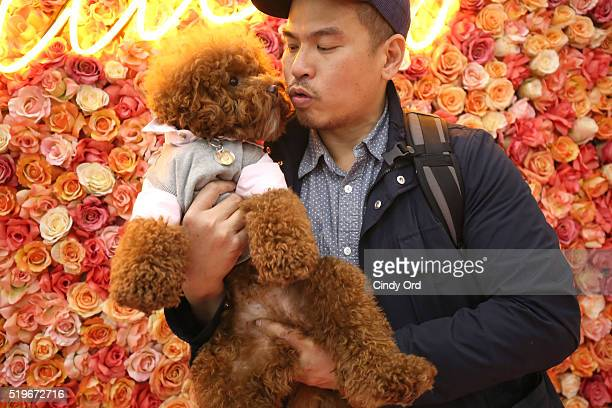 Allan Monteron with dog Agador at Birdcage Spring Launch Event At Lord Taylor on April 7 2016 in New York City
