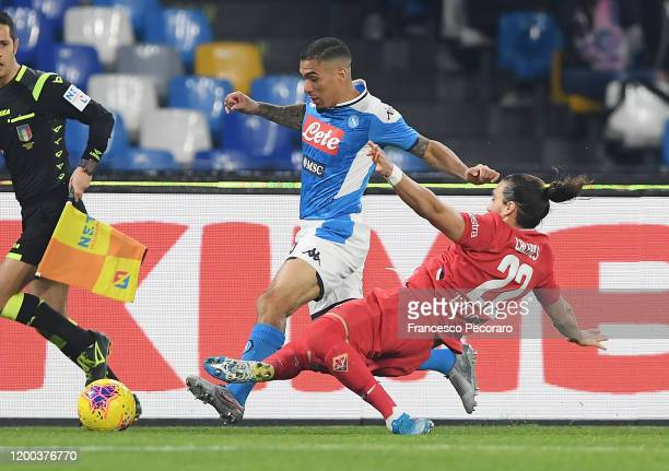 Allan of SSC Napoli vies with Martin Caceres of ACF Fiorentina during the Serie A match between SSC Napoli and ACF Fiorentina at Stadio San Paolo on...