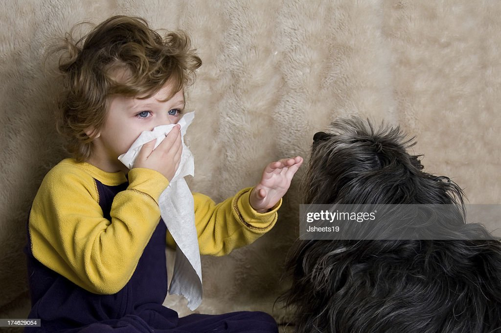 Allergy Child : Stock Photo