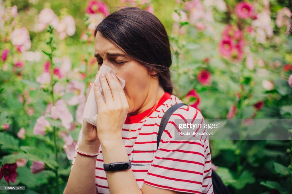 Allergy : Stock Photo