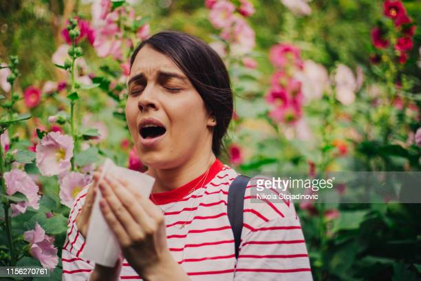 allergy - allergy stock pictures, royalty-free photos & images