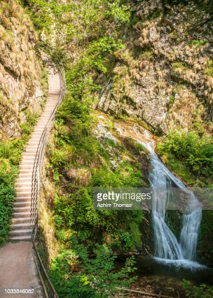 allerheiligen waterfalls, black forest, germany, europe - baden württemberg stock pictures, royalty-free photos & images