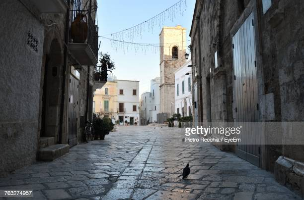alley amidst buildings in town - polignano a mare stock photos and pictures