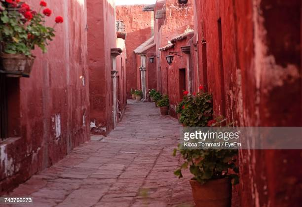 alley amidst buildings - buenos aires stock pictures, royalty-free photos & images