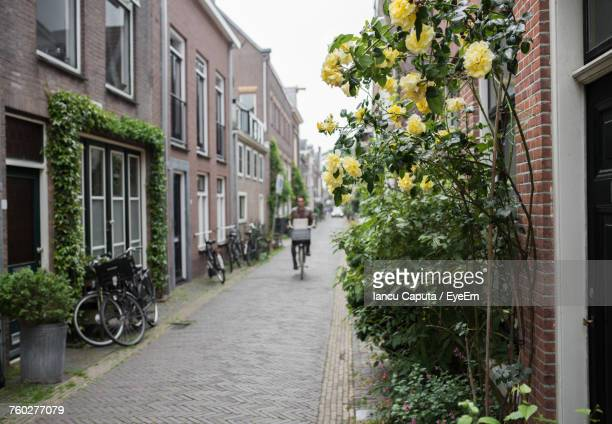 alley amidst houses in city - haarlem stock photos and pictures