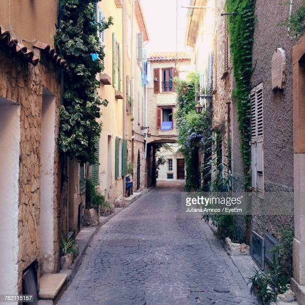alley amidst plants - antibes stock photos and pictures