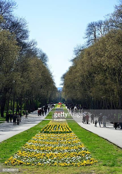 Alley in the Sea Garden of Varna city