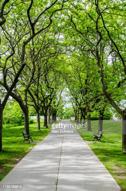 alley of battery park - burlington vermont stock photos and pictures