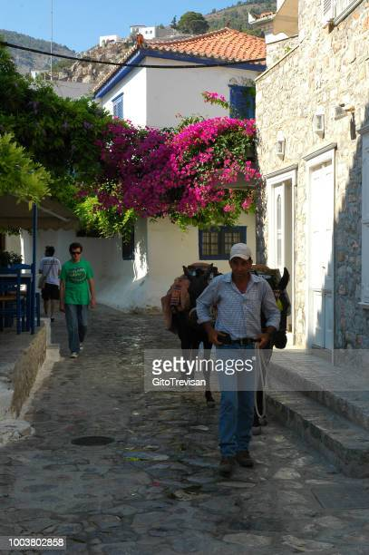 alley of hydra - hydra greece stock photos and pictures
