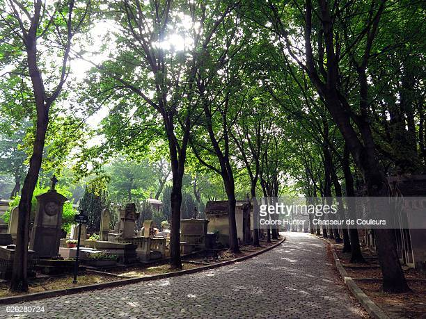Alley of Pere Lachaise Cemetery
