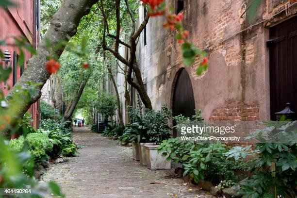 Alley way in Charleston, South Carolina