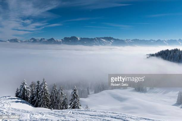Allgaeu Alps, with snow-covered winter forest and fog in the valley, Ofterschwang, Oberallgaeu district, Bavaria, Germany