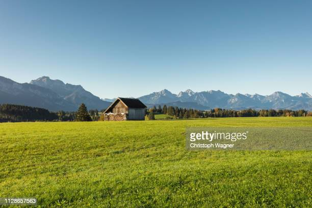allgäu - sonne stock pictures, royalty-free photos & images