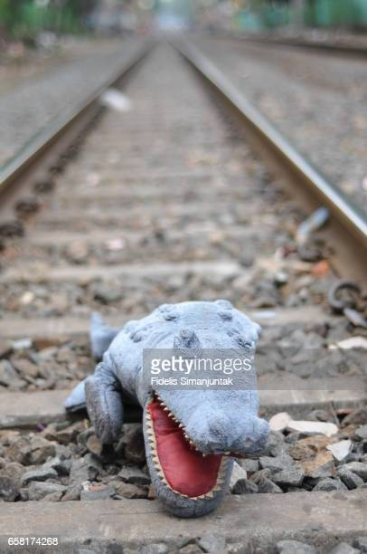 Alligator doll in the Jakarta train railroad