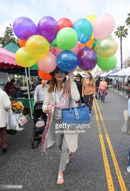 Allison Janney is seen on March 03 2019 in Los Angeles California