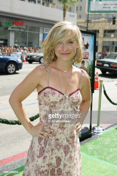 Allison Mack during Warner Bros Pictures' Premiere of The Ant Bully at Grauman's Chinese Theatre in Hollywood CA United States