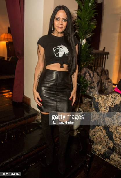 Allison Melnick attends the Book Signing And Celebration For Roger Padilha And Mauricio Padilha's 'Richard Bernstein Starmaker'at Chateau Marmont on...