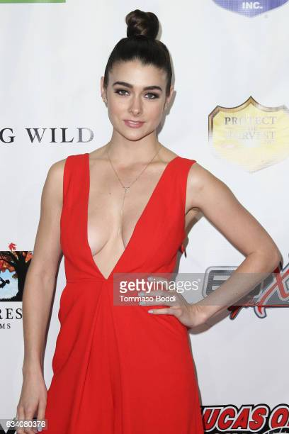 Allison Paige attends the premiere of Sony Pictures Home Entertainment's 'Running Wild' held at TCL Chinese Theatre on February 6 2017 in Hollywood...