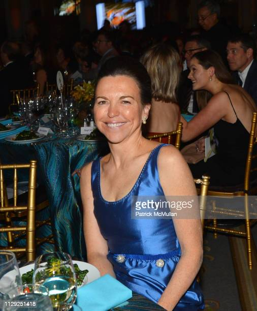 Allison Rockefeller attends National Audubon Society Gala 2019 at The Plaza Hotel on February 7 2019 in New York City