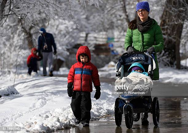 Allison Schwartz and her family enjoy a walk along Boulder Creek amidst trees covered with snow on February 23 2016 in Boulder Colorado With Schmitz...