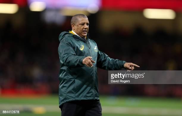 Allister Coetzee Head coach of South Africa looks on prior to he international match match between Wales and South Africa at Principality Stadium on...