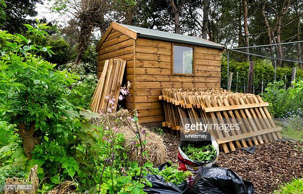 allotment and garden shed - shed stock pictures, royalty-free photos & images