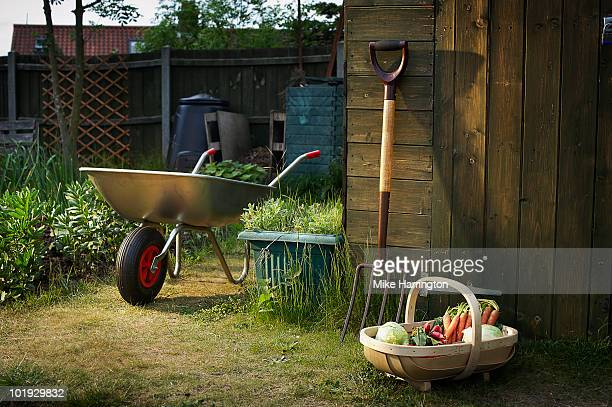 allotment and gardening tools - gardening equipment stock pictures, royalty-free photos & images