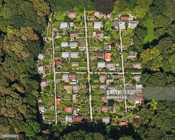 Allotment garden, aerial view