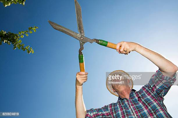 Allotment gardener with hedge trimmer in front of blue sky