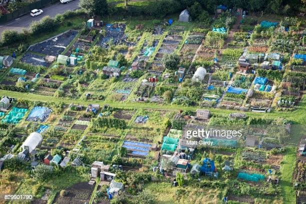 Allotment gardens are seen from the air on the second day of the Bristol International Balloon Fiesta on August 11, 2017 in Bristol, England. More...