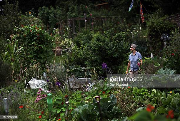 Allotment plot holder Christine Hodder pushes a wheel barrow on her plot at Branch Hill Allotments on August 10, 2009 in London, England. Several...