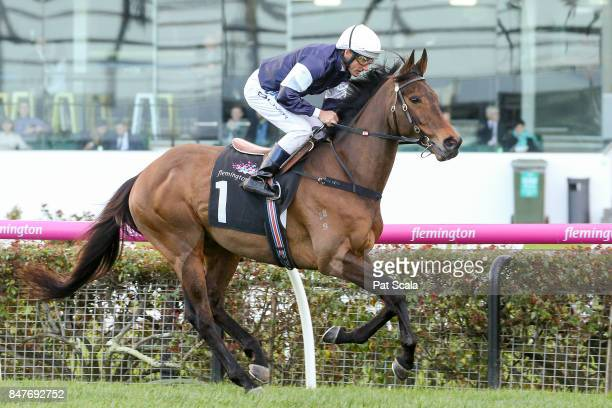 Almandin ridden by Damien Oliver heads to the barrier before the Japan Racing Association Trophy at Flemington Racecourse on September 16 2017 in...