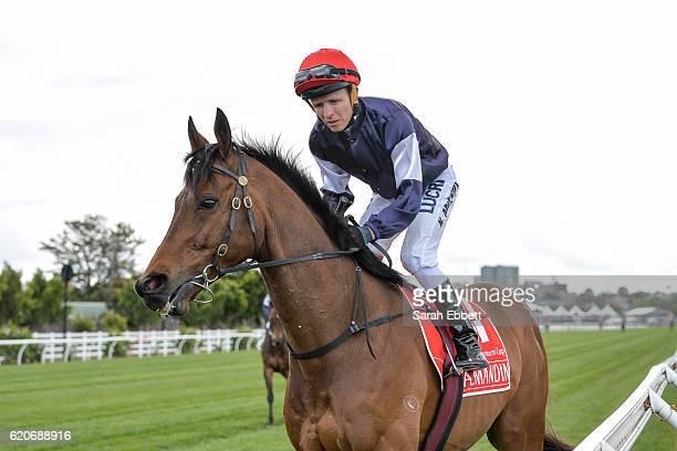 Almandin ridden by Kerrin McEvoy wins Emirates Melbourne Cup at Flemington Racecourse on November 01 2016 in Flemington Australia