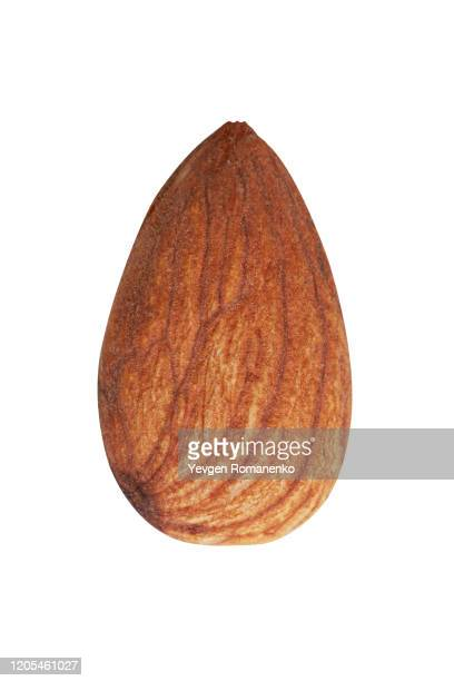 almond nut isolated on white background - almond stock pictures, royalty-free photos & images